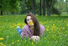 Beautiful woman on the grass Royalty Free Stock Image
