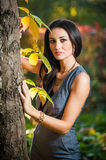 Beautiful woman in gray posing in autumnal park. Young brunette woman spending time in autumn near a tree in forest. Royalty Free Stock Image