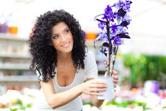 Beautiful woman in a greenhouse Stock Photos