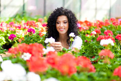 Beautiful woman in a greenhouse Royalty Free Stock Photography