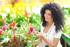 Beautiful woman in a greenhouse Stock Photography