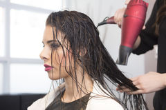 Beautiful Woman at Hair Salon Stock Photos