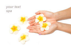 Beautiful woman hand with spa candle Stock Images