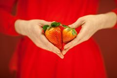 Beautiful woman hands holding some strawberries in her hands. Sensual studio shot can be used as background royalty free stock photography