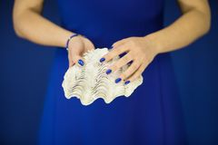 Beautiful woman hands with perfect nail polish holding giant clam, white shell on blue Royalty Free Stock Images