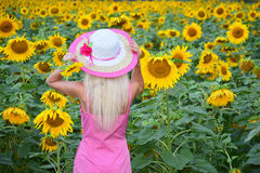 The beautiful woman in a hat in the field of sunflowers Royalty Free Stock Photo