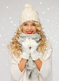 Beautiful woman in hat, muffler and mittens Royalty Free Stock Photo