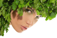 Beautiful woman with hat of parsley Stock Photos