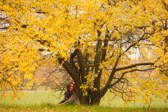 Beautiful woman having rest under huge autumn yellow tree.  Lonely woman enjoying nature landscape in autumn. Autumn day. Girl sit Royalty Free Stock Image