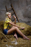 Beautiful woman on hay Stock Photography