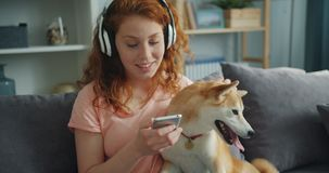 Beautiful woman in headphones listening to music and petting dog on couch. Beautiful woman in headphones is listening to music and petting pedigree dog sitting stock video
