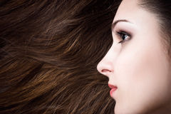 Beautiful woman with healthy hair Royalty Free Stock Photos