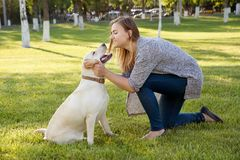 Beautiful woman with her dog. Labrador retriever Stock Images