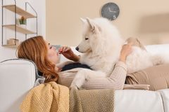 Beautiful woman with her dog lying on sofa stock images