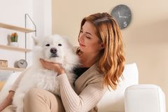 Beautiful woman with her dog sitting on sofa. At home stock photography