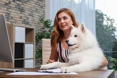 Beautiful woman with her dog sitting at table royalty free stock images