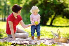 Beautiful woman and her little grandson having a picnic Stock Photography