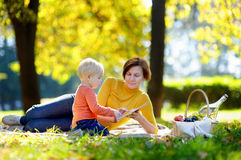 Beautiful woman and her little grandson having a picnic Stock Images