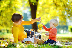 Beautiful woman and her little grandson having a picnic Royalty Free Stock Images