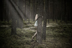 Beautiful woman hiding behind a tree in the forest.  Stock Photo