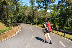 Beautiful woman hiker standing on forest trail and looking away. Female with backpack on hike in nature. Stock Photos