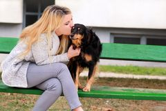 Beautiful woman with his small mixed breed dog sitting, kissing and posing in front of camera on wooden bench at city park. Beautiful woman with his small mixed stock photos