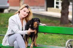Beautiful woman with his small mixed breed dog sitting and posing in front of camera on wooden bench at city park. stock photo