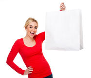 Beautiful Woman Holding Bag With Copy Space royalty free stock photo