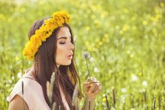 Free Beautiful Woman Holding Flowers On Green Grass Nature Background Royalty Free Stock Images - 113314199