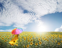 Beautiful woman holding multicolored umbrella in sunflower field and cloud sky. Beautiful woman holding multicolored umbrella in sunflower field Royalty Free Stock Photo