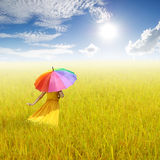 Beautiful woman holding multicolored umbrella in Yellow rice field and cloud sky Royalty Free Stock Photography