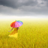 Beautiful woman holding multicolored umbrella in Yellow rice field and rainclouds Stock Photos