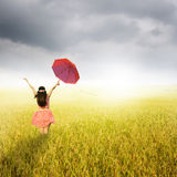 Beautiful woman holding red umbrella in rice field and rainclouds Royalty Free Stock Photography