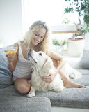 Beautiful woman holding tea cup while touching dog on sofa Royalty Free Stock Images
