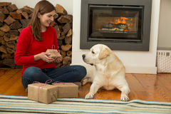 Me and my Dog love gifts Stock Images