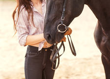 Beautiful woman and horse. Backlight. Royalty Free Stock Photo
