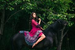 Beautiful woman on a horse. Dressed in long violet dress Stock Photos