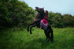 Beautiful woman on a horse royalty free stock image