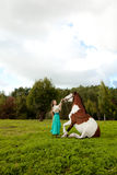 Beautiful woman with a horse in the field. Girl on Royalty Free Stock Photos