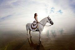 Beautiful woman on a horse. Horseback rider, woman riding horse Stock Photos