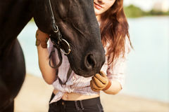 Beautiful woman and horse. On the river bank Stock Photos