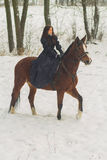 Beautiful woman and horse in winter Stock Images