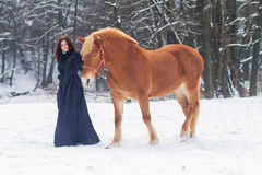 Beautiful woman and horse in winter Stock Photos