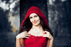 Beautiful woman in the image Royalty Free Stock Images