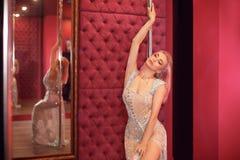 Free Beautiful Woman In Shining Silver Dress Posing By Pylon In Strip Night Club. Poledance. Glamour Poledancer Girl Stock Image - 183259521