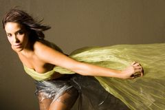 Beautiful Woman In Silk Stock Images