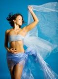 Beautiful Woman In Silk Royalty Free Stock Photo