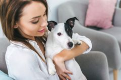 Beautiful woman with jack russell terrier dog sitting. On sofa royalty free stock photo