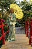 Beautiful woman in kimono Stock Photos