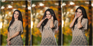 Beautiful woman in lace blouse posing in autumnal park. Young brunette woman spending time in forest during fall season Stock Images